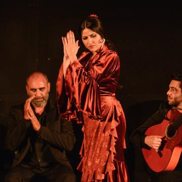flamenco real gema moneo